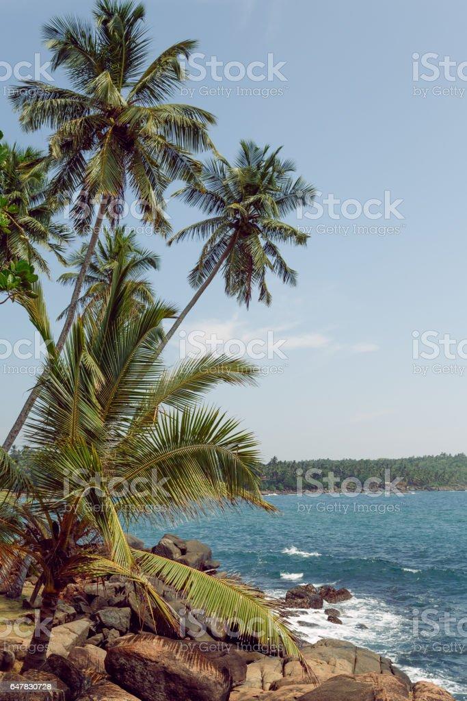 playa rocosa de paisaje tropical - foto de stock