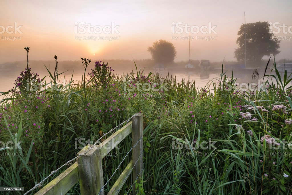 Landscape view across field to foggy River Thurne during glowing sunrise in Summer stock photo