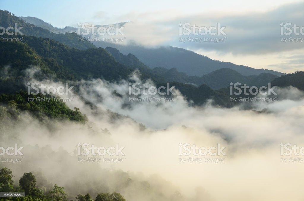 Landscape view at Phu Lang Ka stock photo