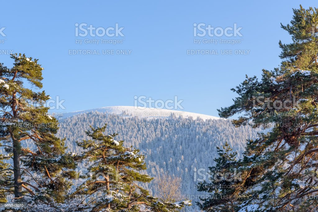 Landscape View forest at Golcuk National Park royalty-free stock photo