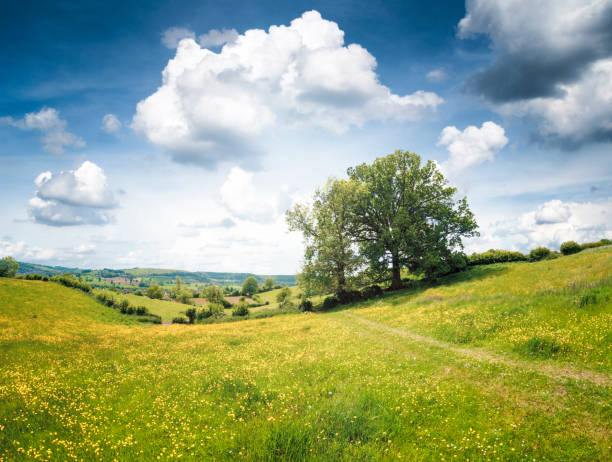 Landscape View In Gloucestershire, England stock photo