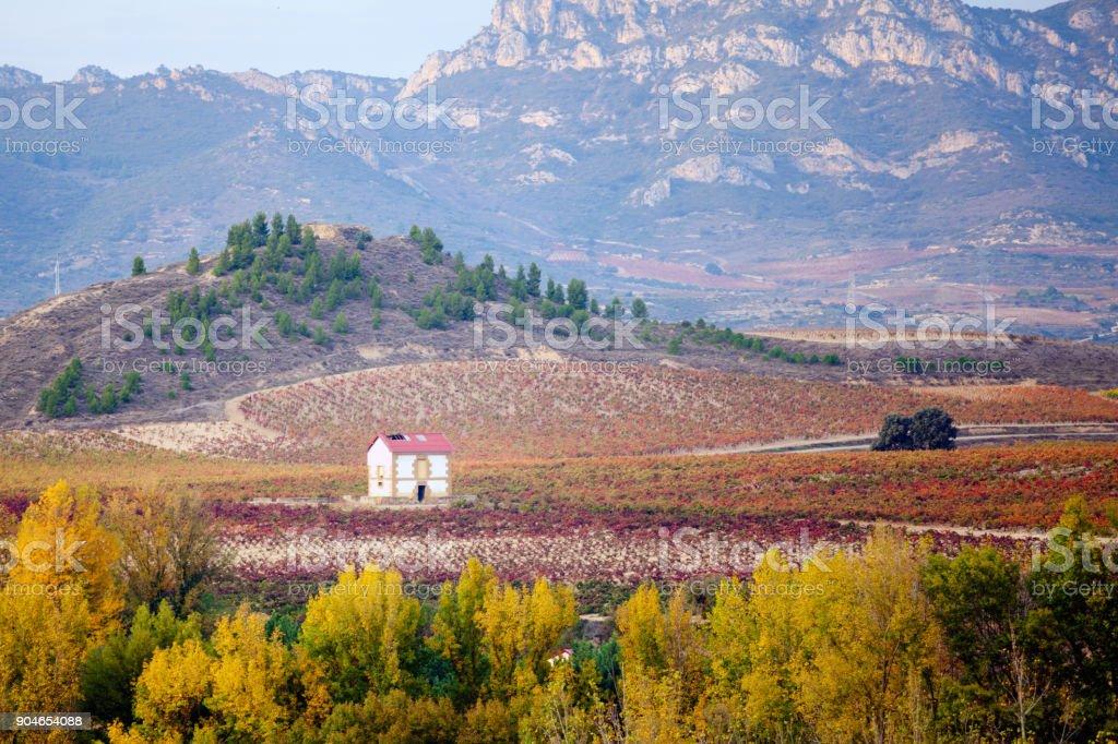 Eine Landschaftsansicht in der Nähe von Haro, Rioja. Spanien. – Foto