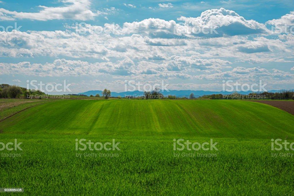 Querformat ein Ackerland mit bewölktem Himmel – Foto