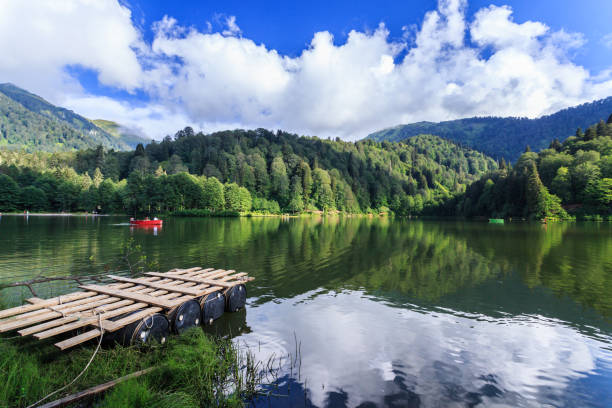 Cтоковое фото Landscape view of Karagol (Black lake) in Savsat,Artvin,Turkey