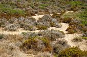 Landscape View of Tarifa - Cadiz - Sand Dunes at Punta Paloma Beach. Mediterranean sea in background