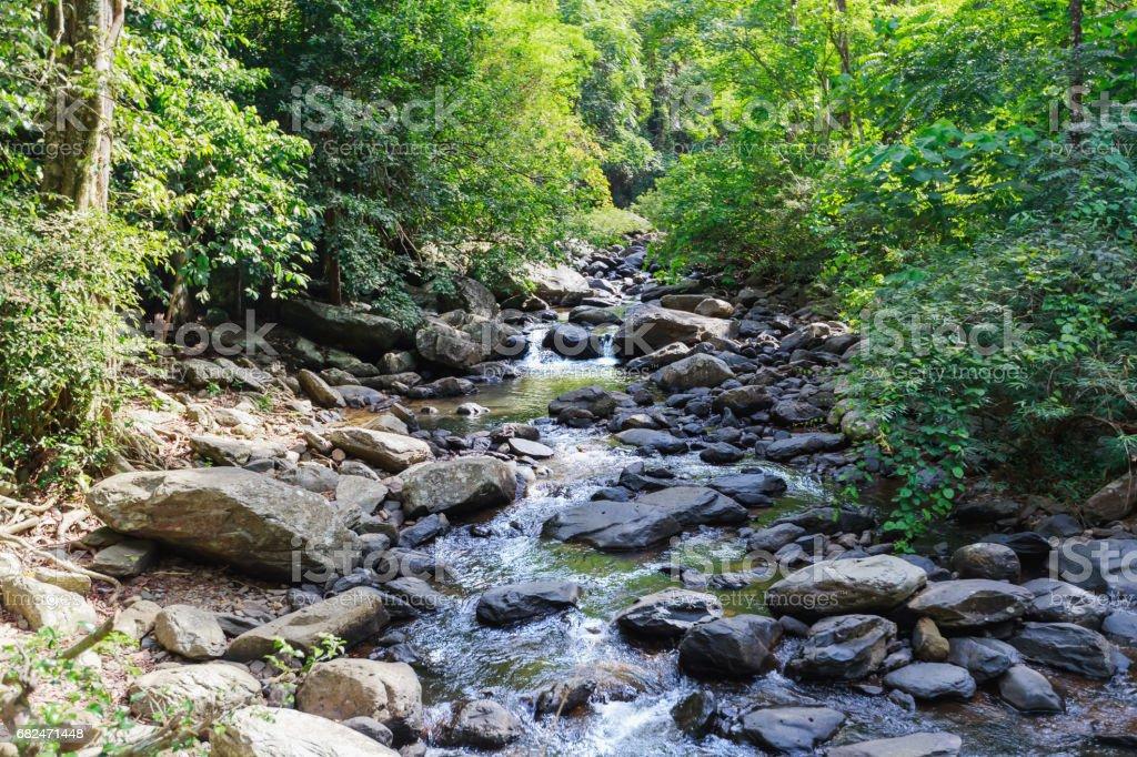 Vista de flujo de agua del paisaje y profundo de la roca en el bosque con rayo de sol, el verano en Tailandia, trekking y senderismo concepto. foto de stock libre de derechos