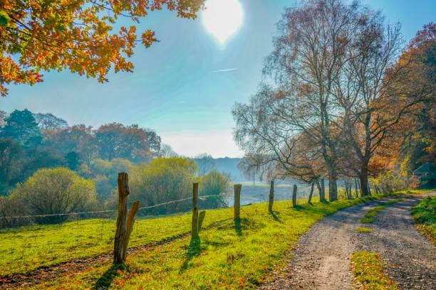 독일의 강 풍경 전망 - 브란덴부르크 주 뉴스 사진 이미지