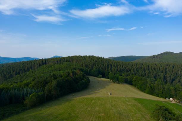 Landscape Vosgien Cette photo a été prise en France, en Alsace, dans les Vosges à proximité de Sélestat et du Château du Haut-Knigsbourg qui domine la vallée du Rhin et quelques villages typiques alsaciens. On y voit des forêts et des sommets alsaciens ainsi que des prairies. grand est stock pictures, royalty-free photos & images