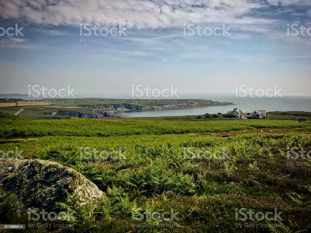 Landscape water and country view stock photo