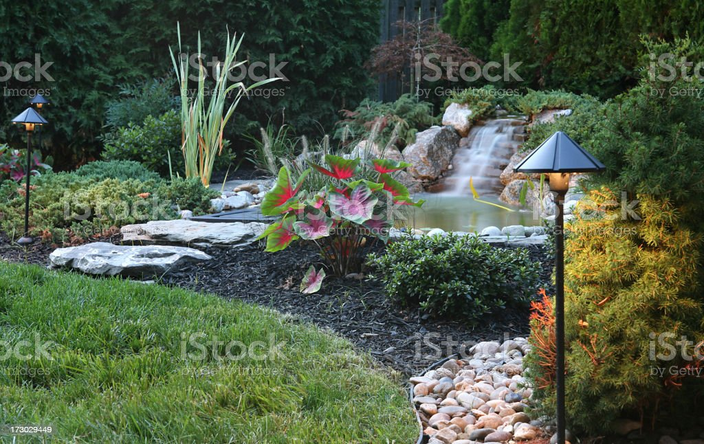 a small bachyard koi pond with waterfall and lighting at dusk.. long...