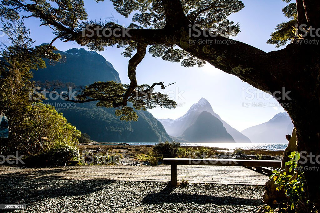 Landscape with a bench, tree and mountains on background stock photo