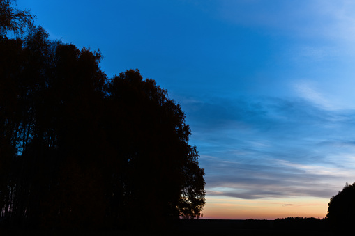 Landscape with a dark silhouette of trees at sunset or sunrise with a beautiful sky