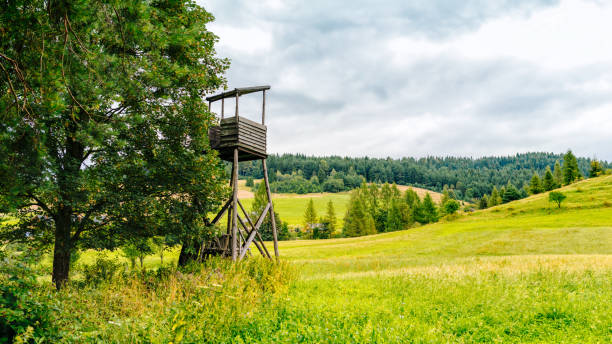 landscape with a hunting seat on the edge of a meadow stock photo