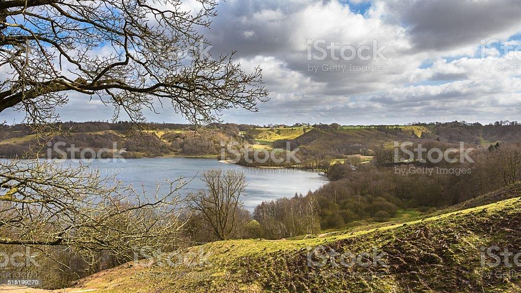 Landscape with a lake near Viborg in Jutland Denmark stock photo