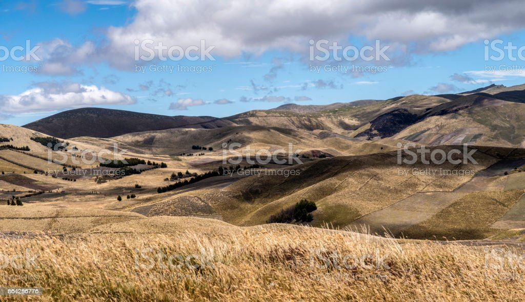 landscape with agriculture and fields in Ecuador royalty-free stock photo