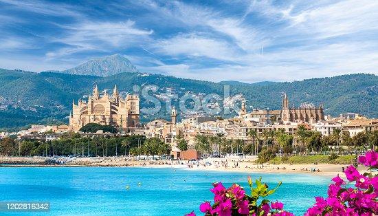 istock Landscape with beach and Palma de Mallorca town 1202816342
