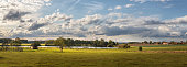 istock landscape with blue sky and clouds - panorama of rural countryside with pond, pasture with cattle 1253632181