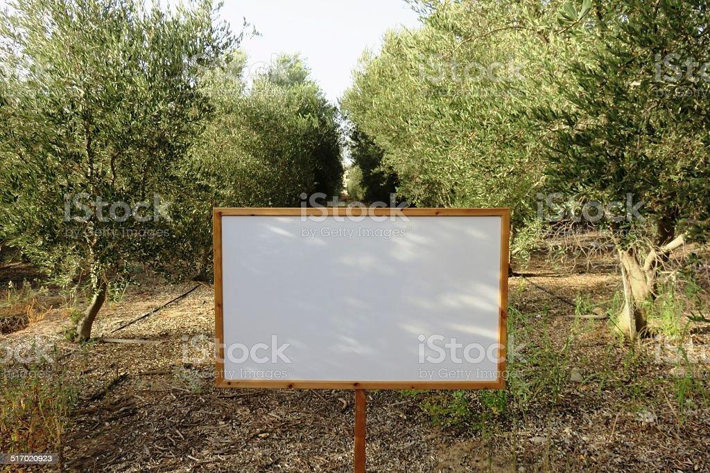 Blank billboard in a field.Copy space.