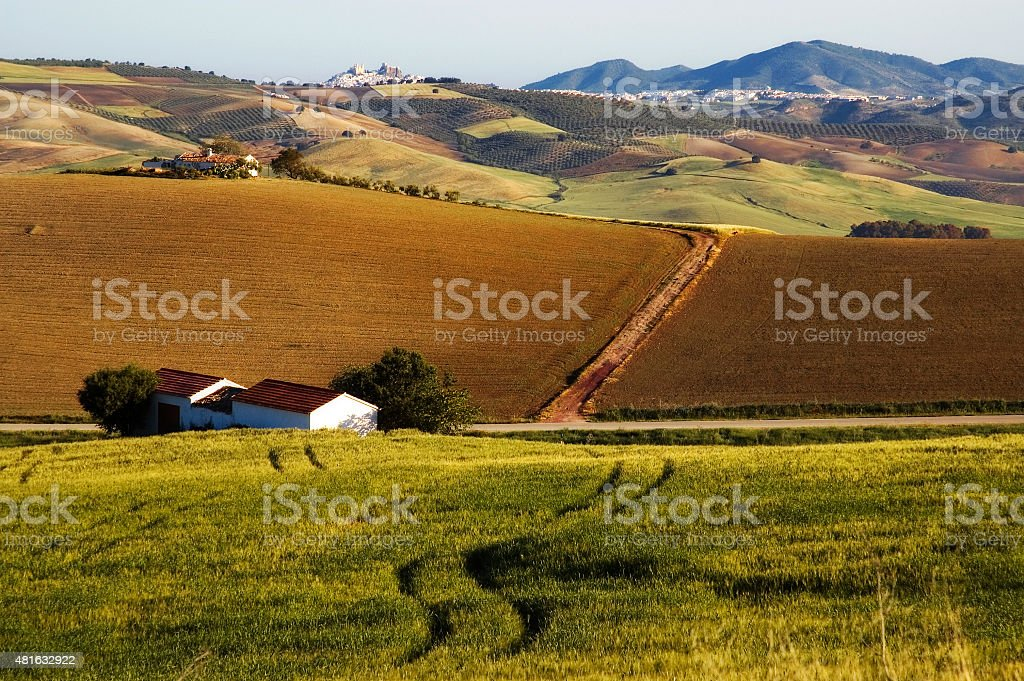 Landscape with cornfields, hills and white town Olvera, Andalusia, Spain stock photo