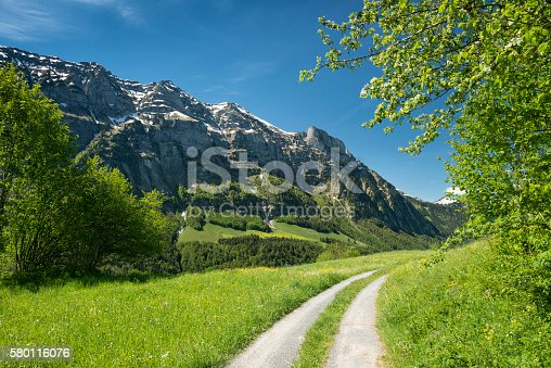 DSLR photo of a landscape with a winding country road at a grassy hill leading to the mountains in the Bregenzerwald in the austrian alps. Nobody is on the road at this sunny day.