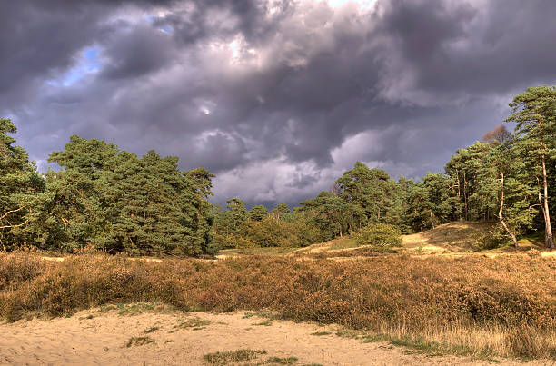 Landscape with dark clouds stock photo