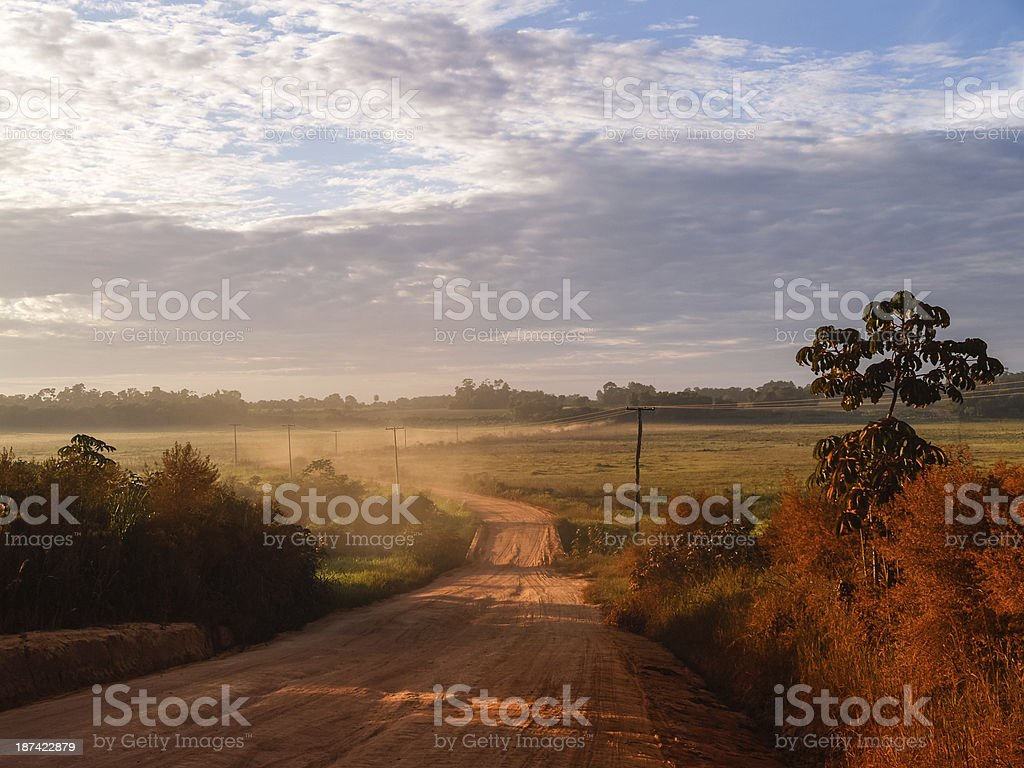 Landscape with dirt road in Paraguay, South America stock photo