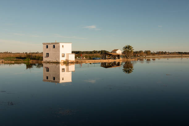 Landscape with farmhouse surrounded by rice plantations and its reflection in the water in Albufera lagoon, in Natural Park of Albufera, Valencia, Spain stock photo