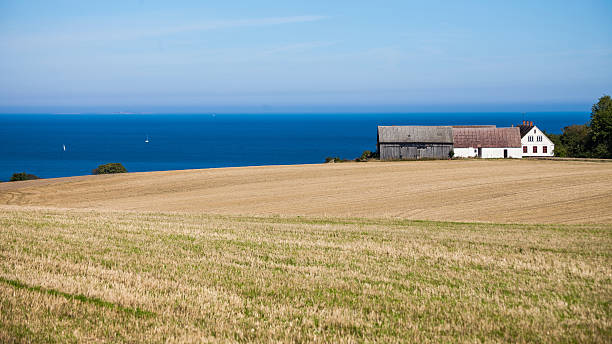 Landscape with field, house and sea – Foto