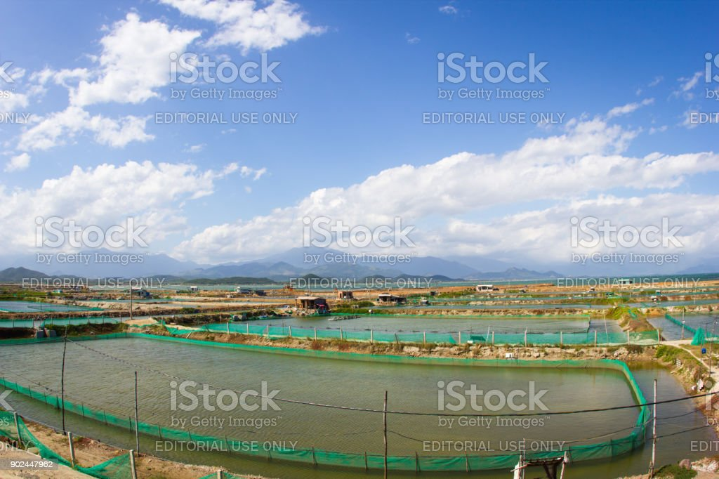 Landscape with fields of shrimp farms and aerator turbine wheel oxygen fill into lake water, mountains and ponds. Vietnam, Nha Trang city stock photo