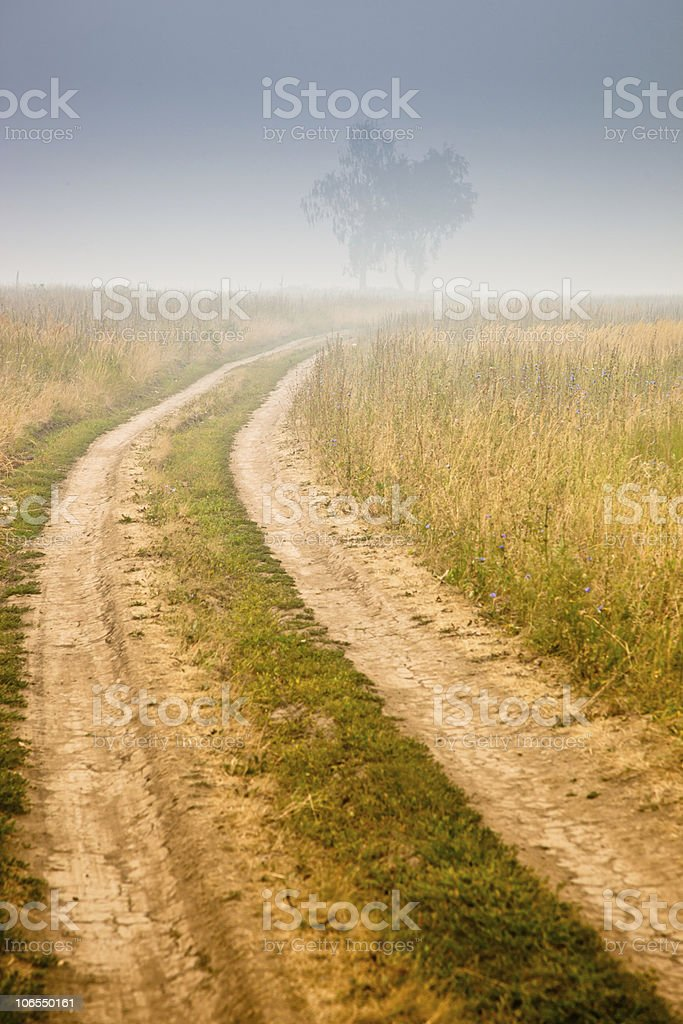 Landscape with fog. stock photo