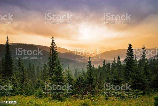 Photo of Landscape with fog