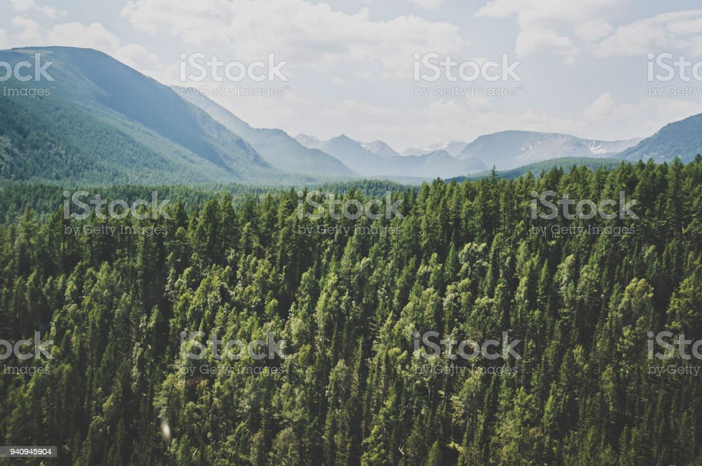 Landscape with forest mountains. stock photo