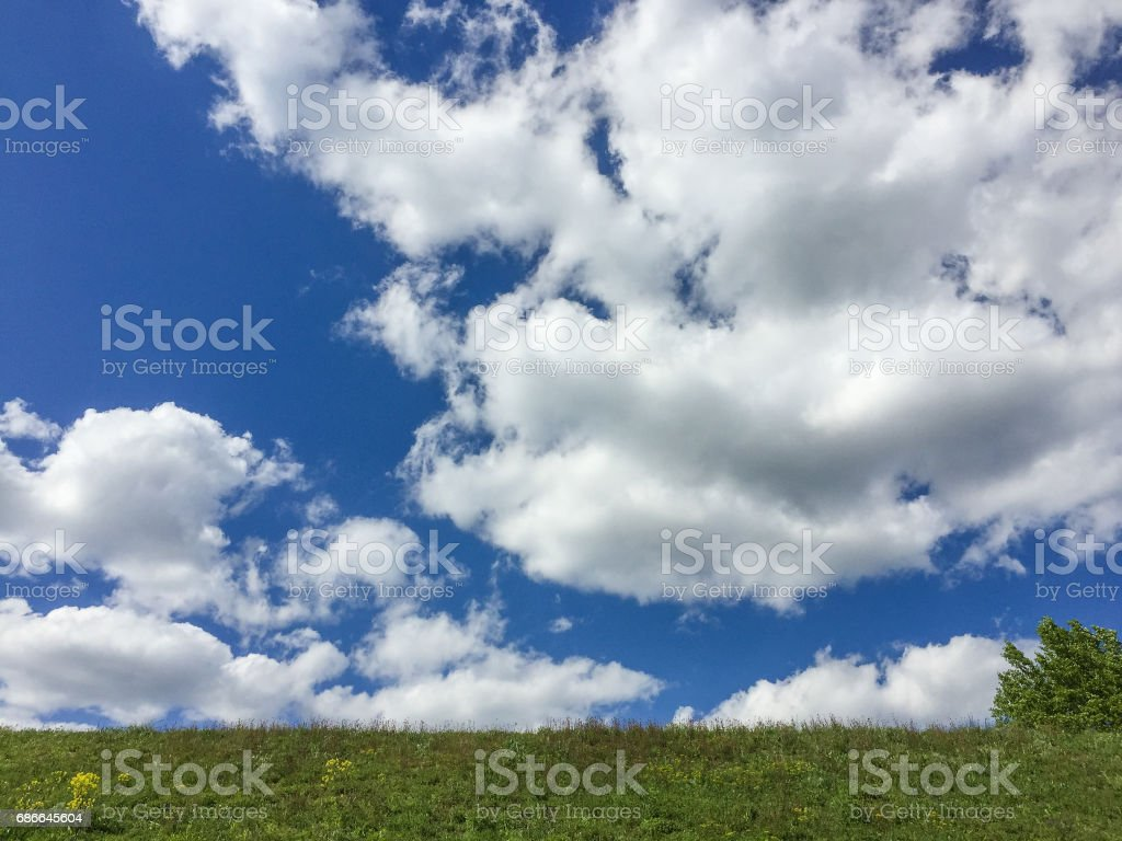 landscape with grass and blue sky and clouds royalty-free stock photo