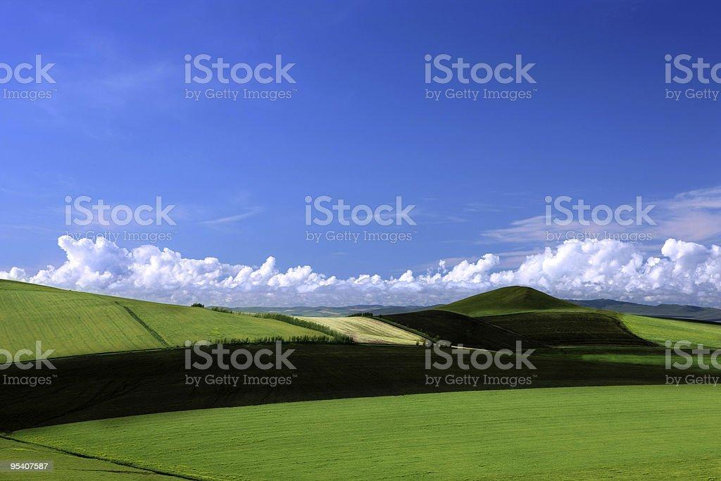 Landschaft mit grünem Gras und blauer Himmel und weiße Wolken. Lizenzfreies stock-foto