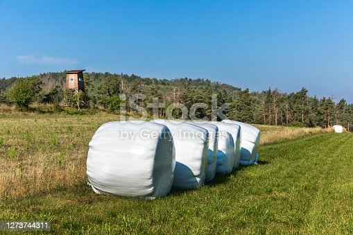 Landscape with hay bales in plastic wrap. Agricultural landscape in the Czech Republic. Hogs watchtower on a summer morning, hunting tower.