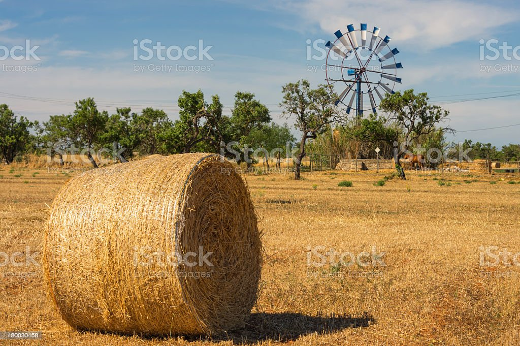 Landscape with Hay Bales, Mallorca, Spain stock photo