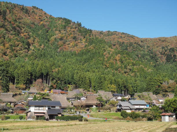 landscape with japanese houses lined up - satoyama scenery stock photos and pictures
