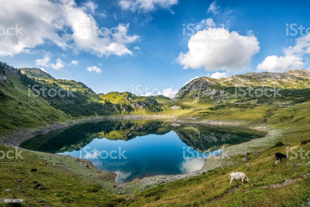 Landscape with lake in the austrian mountains stock photo
