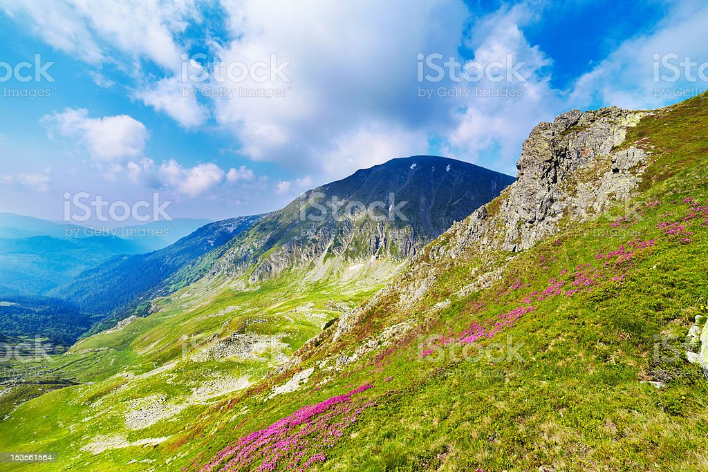 Landscape with Mohoru peak of Parang mountains in Romania royalty-free stock photo