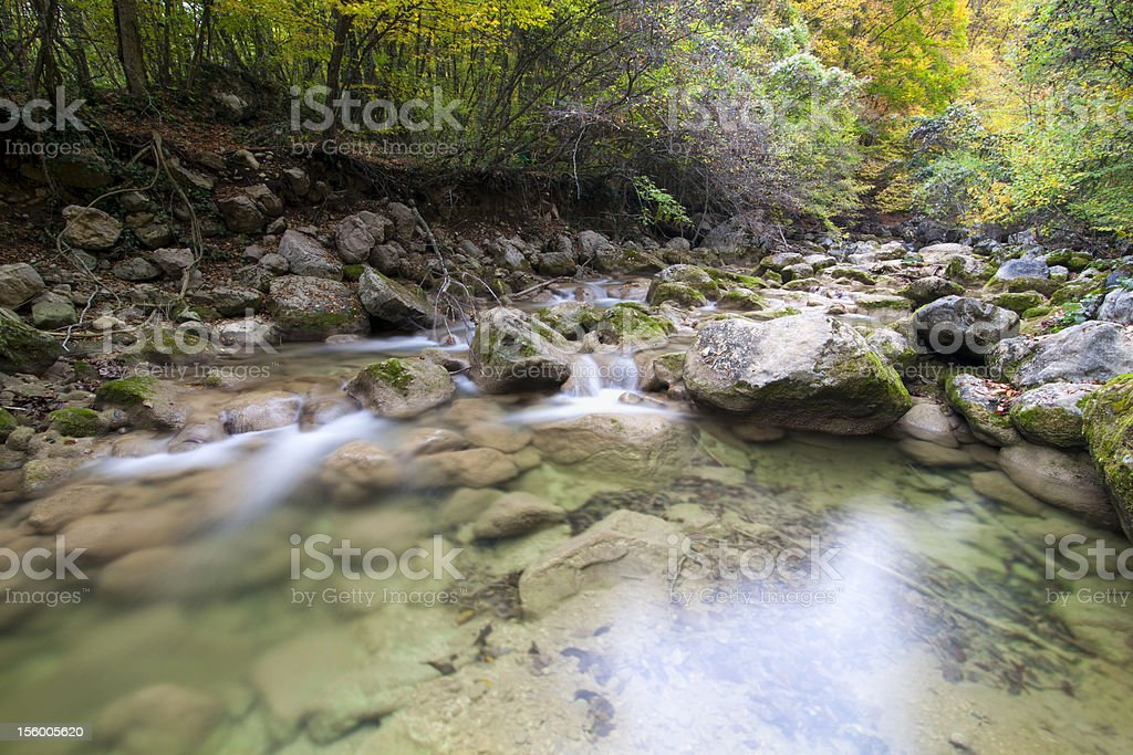 Landscape with mountain river and the wood stock photo