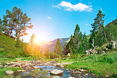 Beautiful view of mountain river in summer time in the morning sun.