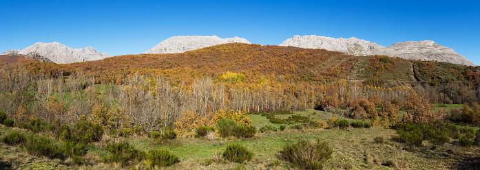 Landscape with Prairies, Limestone Rock Mountain and Autumn Forest - Paisaje con Praderas, Montaña de Roca Caliza y Bosque Otoñal