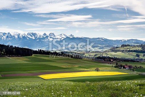 istock Landscape with rapefield in spring, view towards Aaretal and Gantrisch Nature Park, Bernese Oberland, Switzerland 1318515245