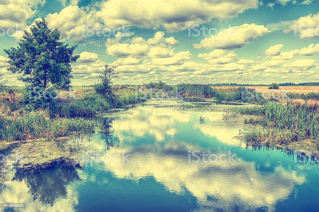 Landscape With River Trees And Clouds In The Sky Stock Photo