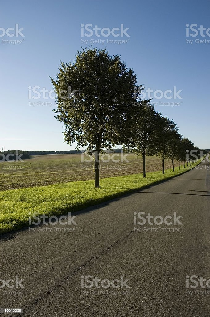 landscape with road royalty-free stock photo