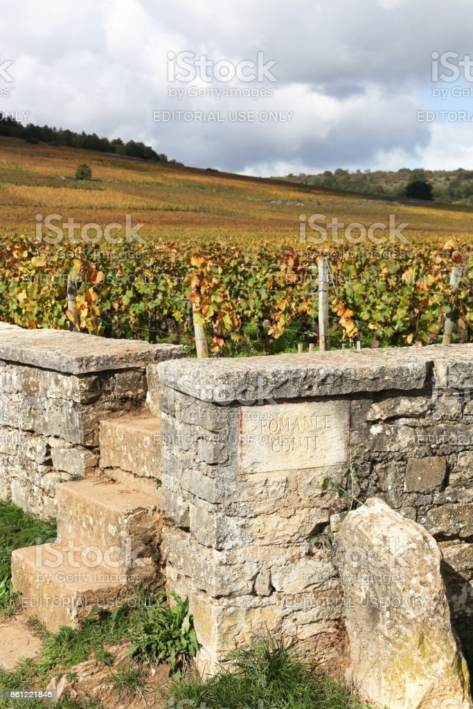 Landscape with Romanee Conti vineyards in Burgundy, France stock photo