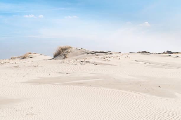 landschaft mit sanddünen der insel norderney, deutschland - urlaub norderney stock-fotos und bilder