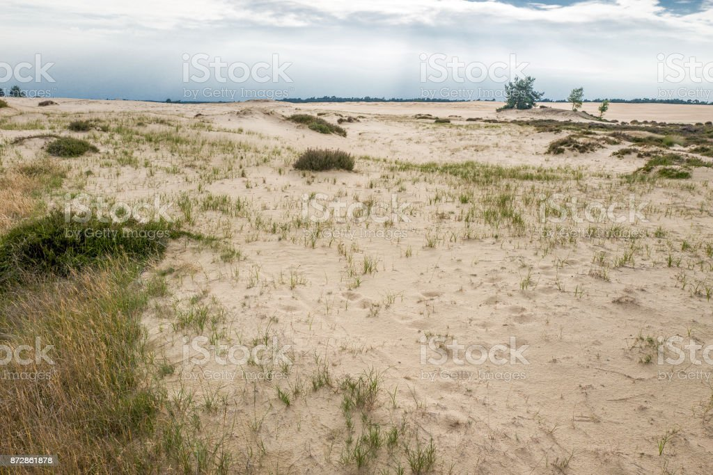 Landscape with sand. stock photo