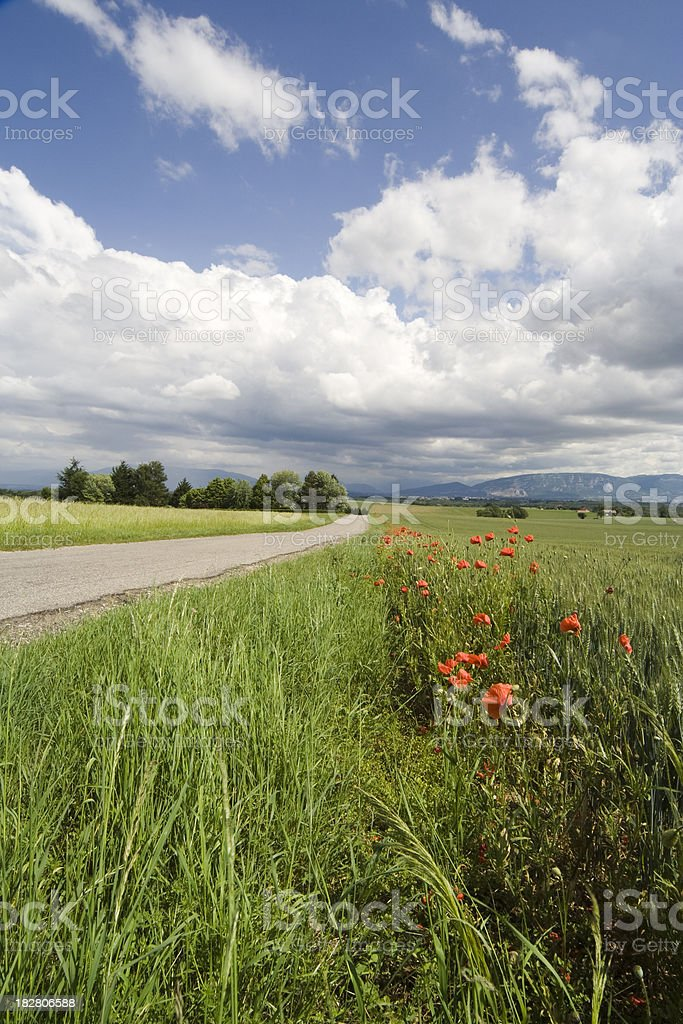 "Landscape with Sky and Field near a Road in France ""Landscape with Sky and Field near a Street, photo taken in France, Ain region."" Agricultural Field Stock Photo"