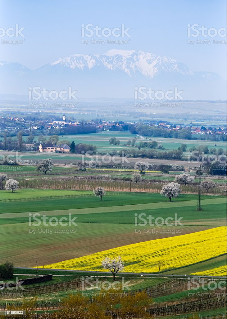 Landscape with snow mountain in the background stock photo